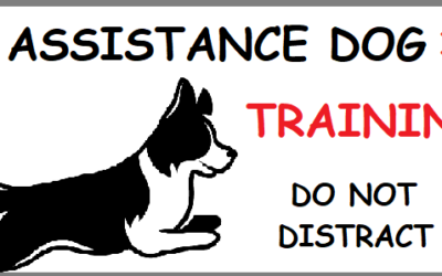 What is an Assistance Dog (AD)?