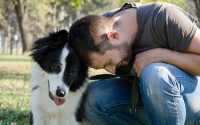 The 11 Qualities of a Responsible Dog Owner